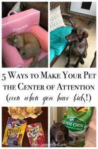 5 Ways to Make Your Pet the Center of Attention (Even When You Have Kids!)