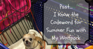 Psst….I Know the Codeword for Summer Fun with My Wolfpack